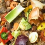 food-waste-facts