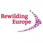 Rewilding-Europe