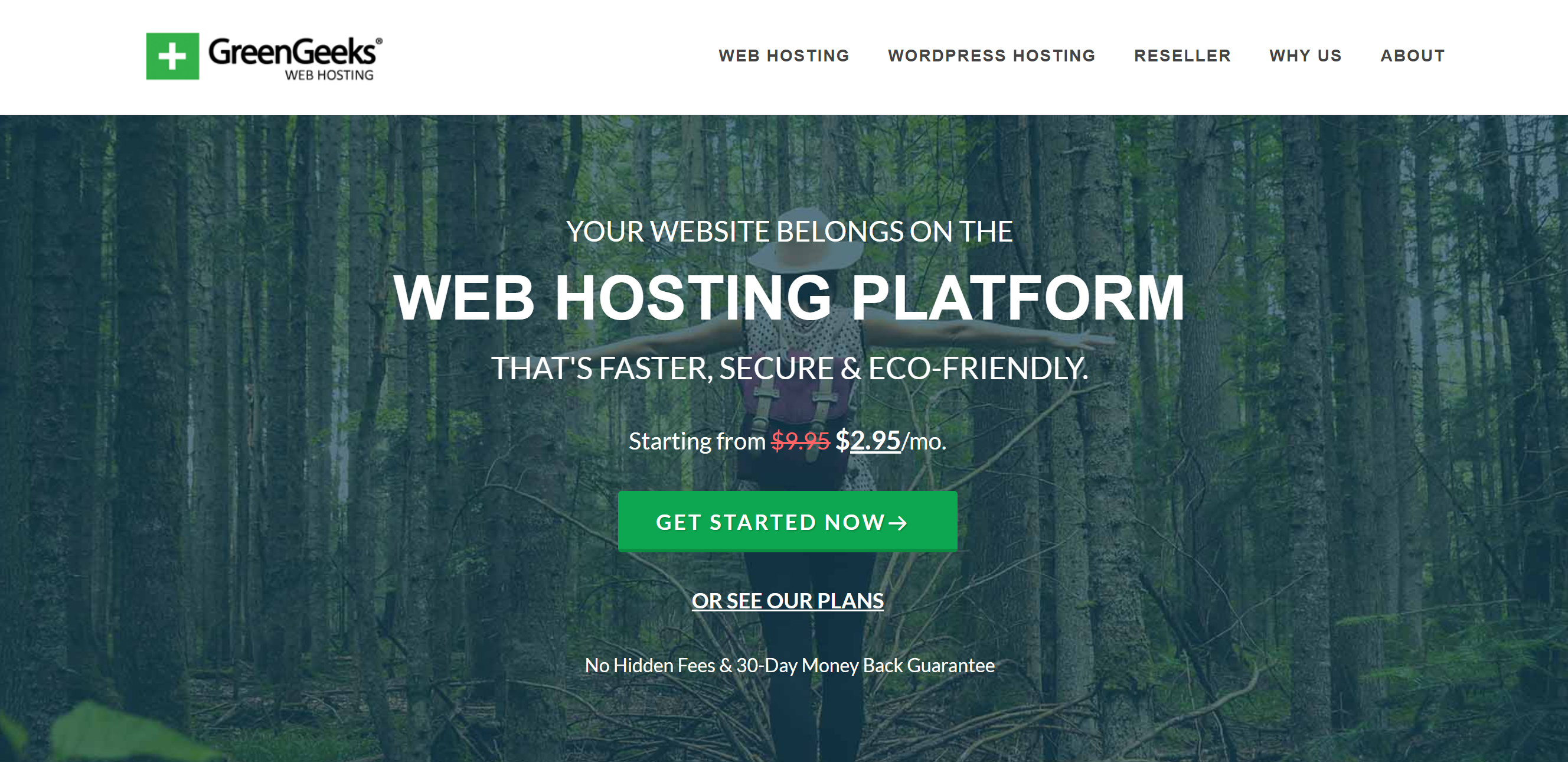 Green Geeks Web Hosting