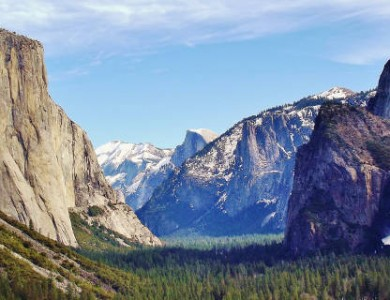Plague has come to Yosemite