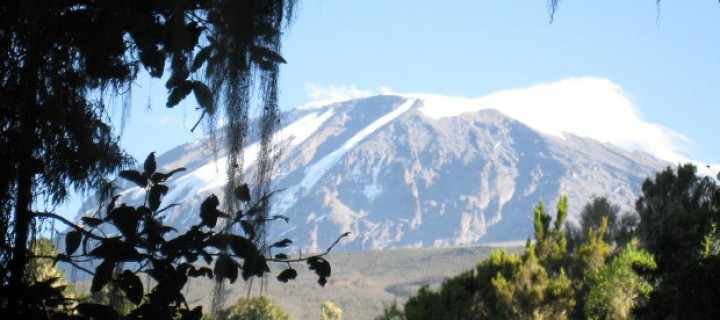 Climate change on Mount Kilimanjaro could see the end of those famed snows