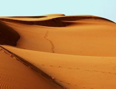 Desert sand from UAE stores solar energy up to 1000°c