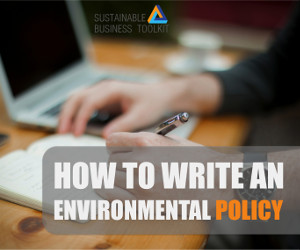 What are some topic ideas for an essay on environmental policy or personal environmental sustainability?