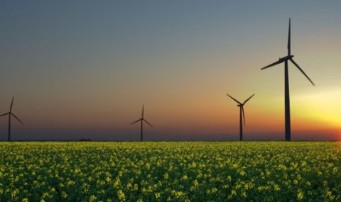 Investing In Renewable Energy – Is Now The Right Time?