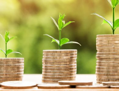 Accessing Capital – Small Business Loans and Other Financing Options
